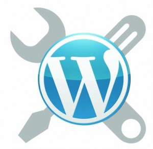 fully costomised WordPress website